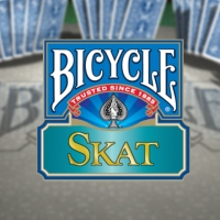 Bicycle Skat