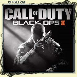 Call of Duty: Black Ops 2 (Русская версия)